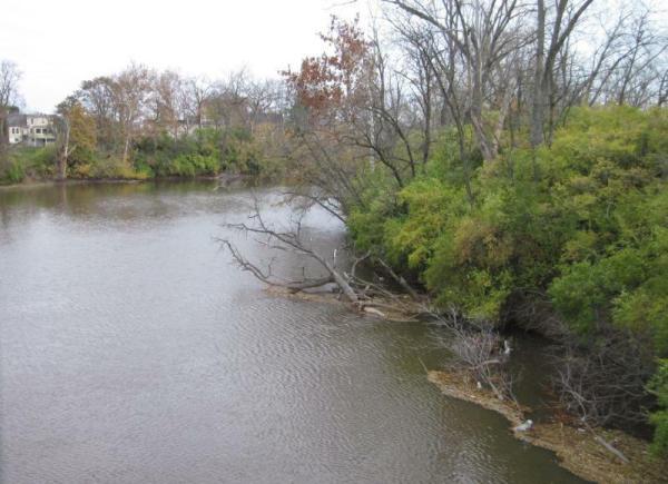 river_from_bridge